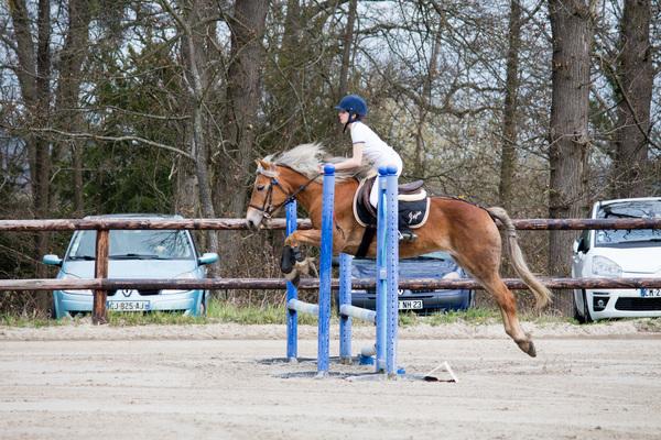 centre equestre 19